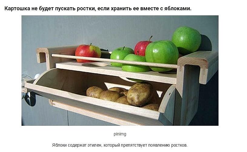 image (45)
