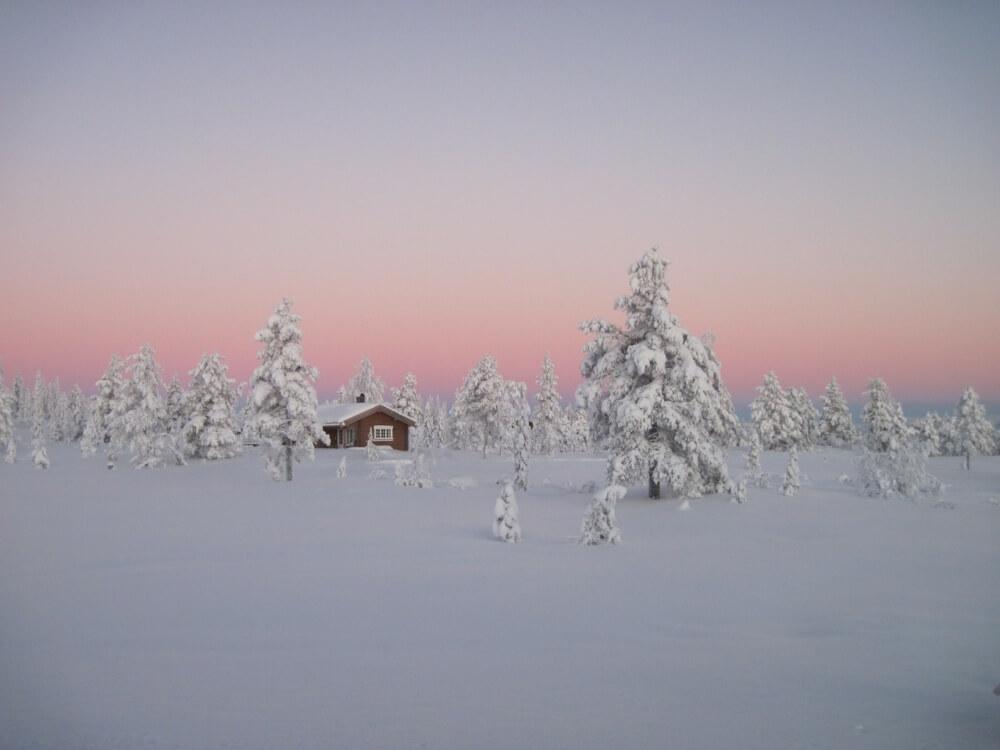 зима сказочно прекрасна, Бореальные леса, Норвегия