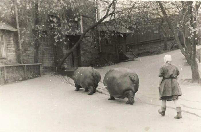 Уникальные исторические фотографии