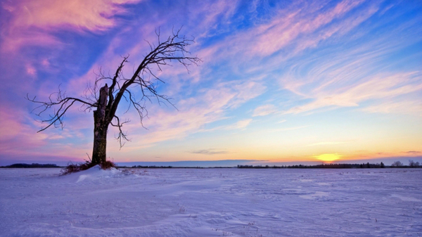 Зима в стихах и фотографиях