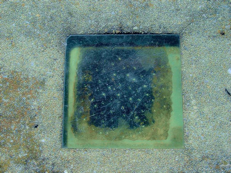 Могила, в которой есть стеклянное окошко!