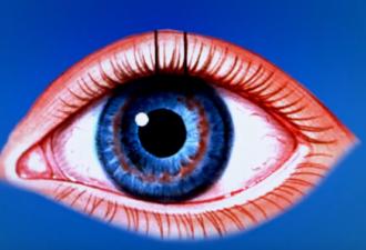 Как устроен и работает человеческий глаз