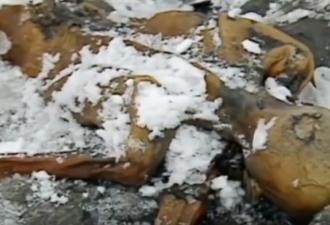 10 Странных, жутких и шокирующих вещей найденных во льду