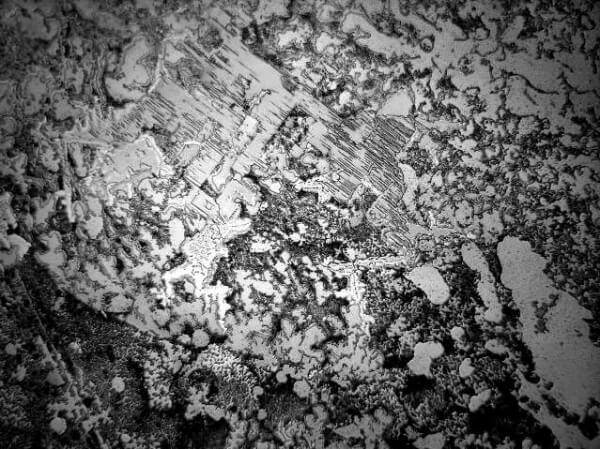 слезы разных чувств под микроскопом