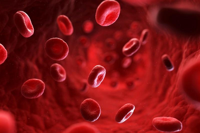 люди с Первой Группой Крови