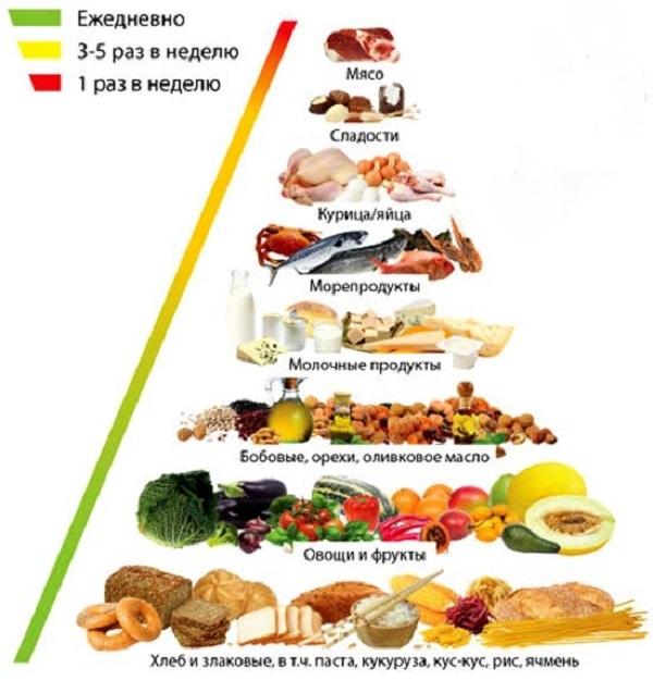 метаболизм, схема продуктов
