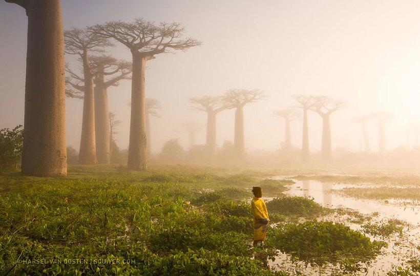 Фотошедевры от National Geographic