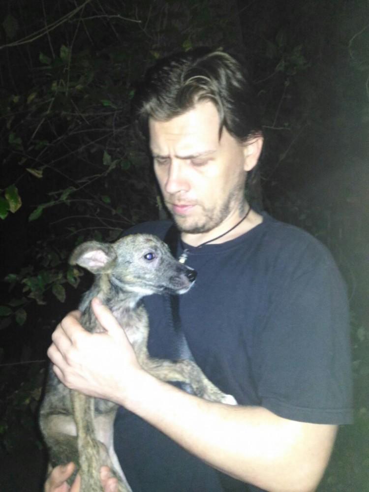 спас собаку от участи шашлыка