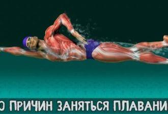 10 причин заняться плаваньем