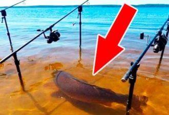15 невероятных случаев на рыбалке